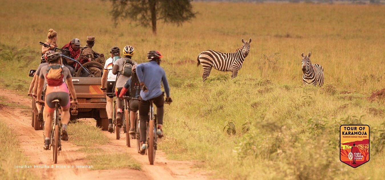 Africa's finest wildlife